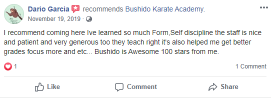 Adult 1 Teen, Bushido Academy