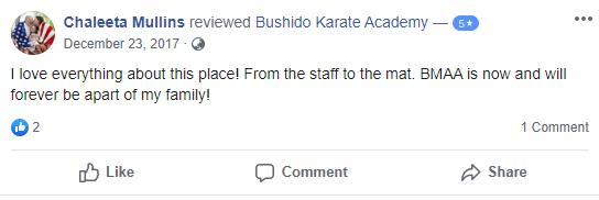 Adult 2, Bushido Academy