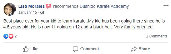 Kids 1, Bushido Academy