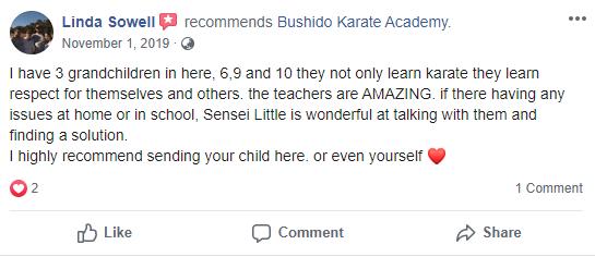 Kids 3, Bushido Academy