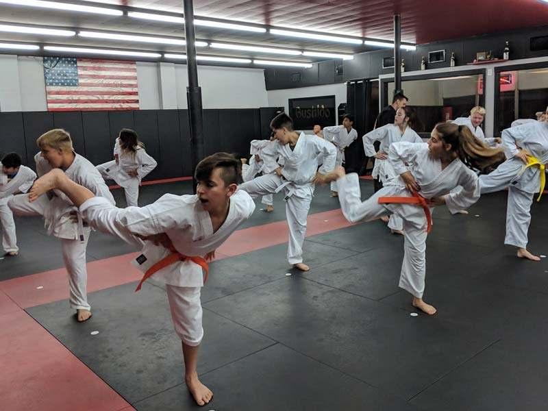 Teenmabushido1, Bushido Academy