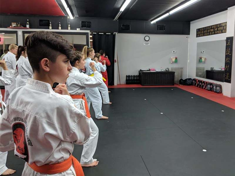 Teenmabushido4, Bushido Academy